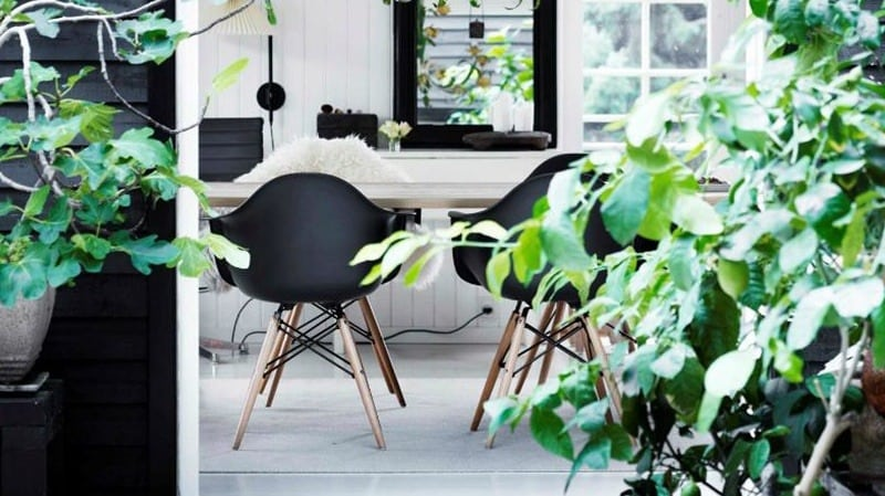 eames chairs in nature   byBespoek