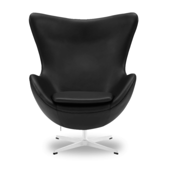 this is an egg chair front image